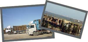 Sedaltor - 15 años de experiencia en la fabricación, compra-venta y reciclaje de palets de madera